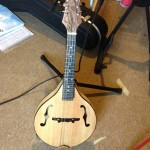 Mandolin handmade by Mike Regan
